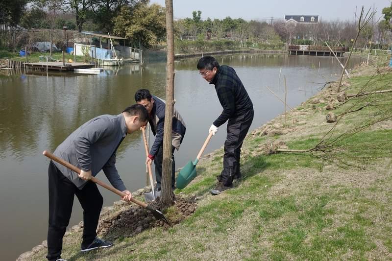 民革太仓市委组织党员开展义务植树活动